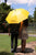 """Right Place, Right Time"" Yellow Umbrella"