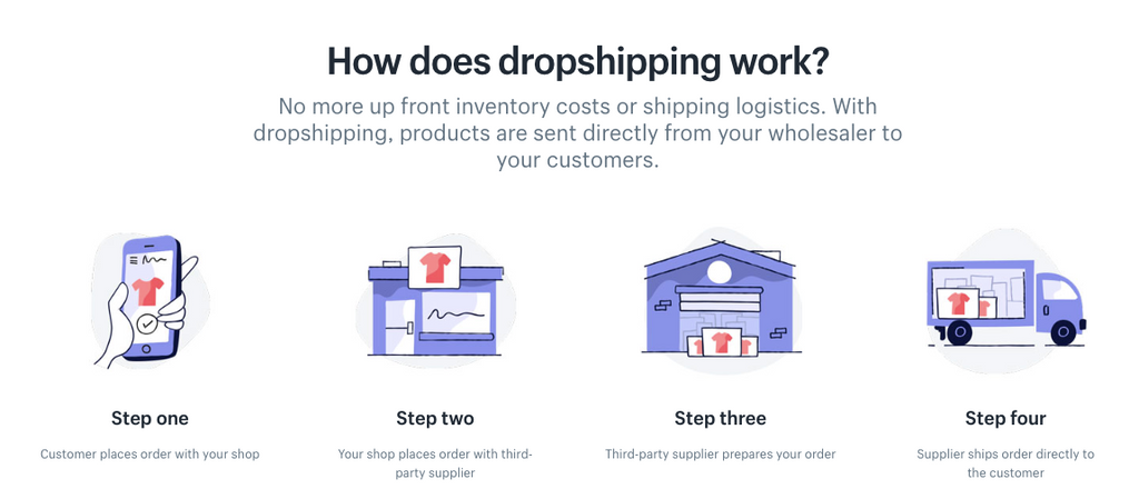 Create a Successful Shopify Dropshipping Store - Consult VA