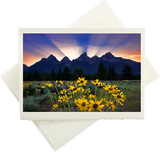 Rays Of Golden Sun (Greeting Card)