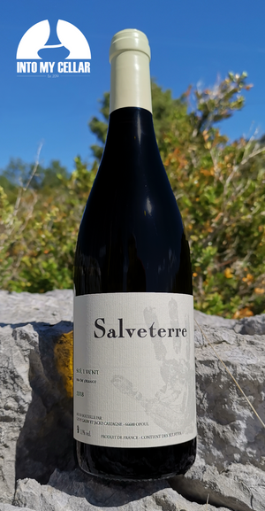 Salveterre, vin blanc, into my cellar, vente de vin nature en ligne