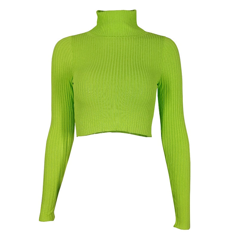 Knitted Turtleneck Skinny Long Sleeve Sweater Crop Top