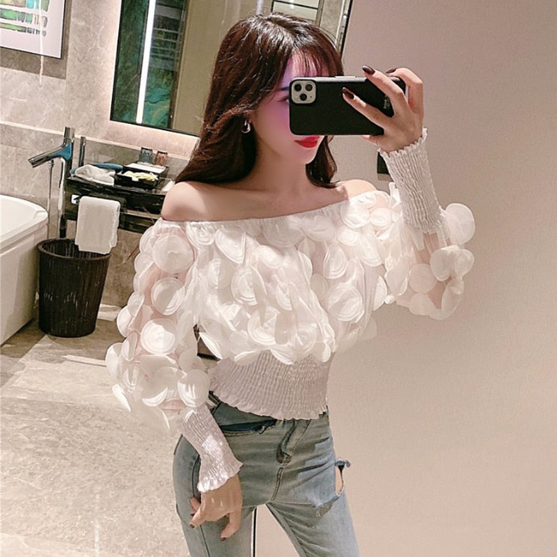 Vintage 3D Flower Mesh Sheer Puff Sleeve Off Shoulder Blouse