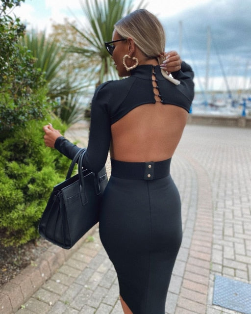 Solid Turtleneck Hollow Out Backless Long Sleeve Bodycon Dress