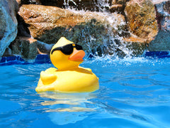 rubber duck in the pool for our pool party