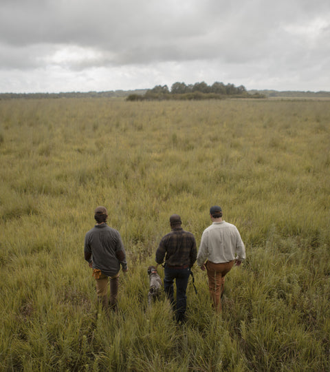Quail Hunt | West Point, MS