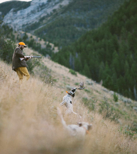 Chukar Hunt | Bridger Mountains, MT
