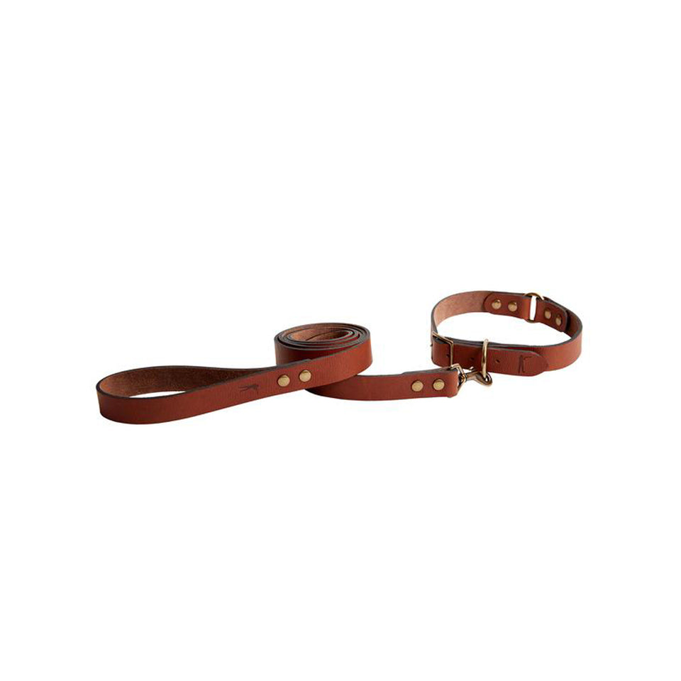 Dog Collar - Signature Leather - Ball and Buck