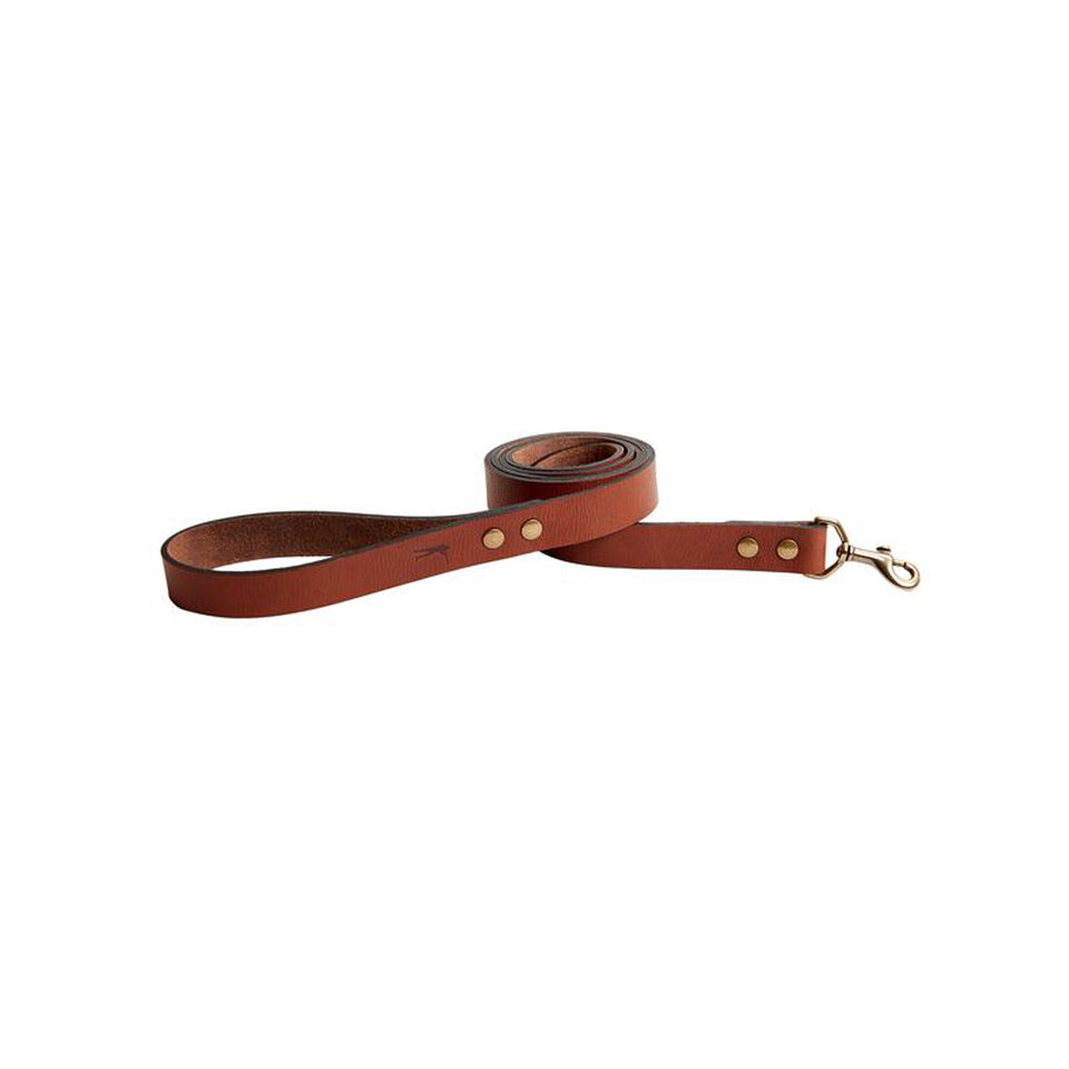 Dog Leash - Signature Leather
