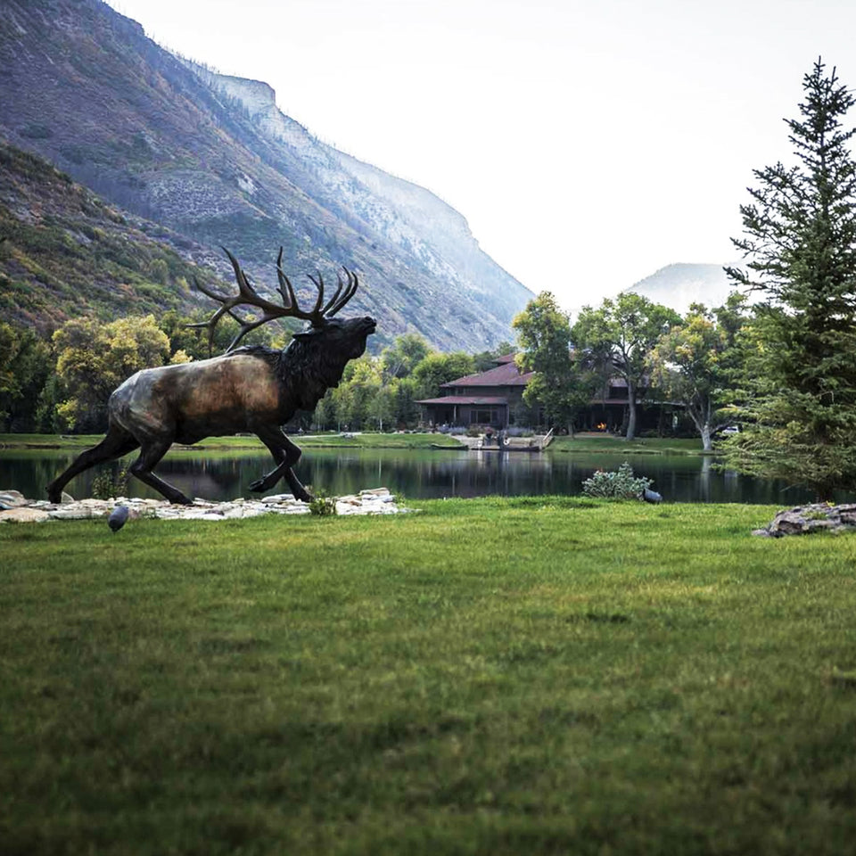 Signature Expedition | World Class Precision Hunter Course - Spring 2020 - Ball and Buck