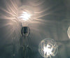 Shadow Bulb - Melissa Borrell Design