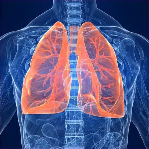 Lung Care Attunement