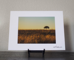 Alone on the Prairie Matted Print