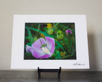 Lounging Grasshopper Matted Print