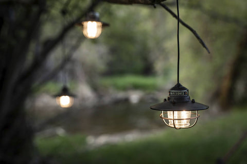 Barebones Living - Edison String Lights - Cabin Fever Outfitters