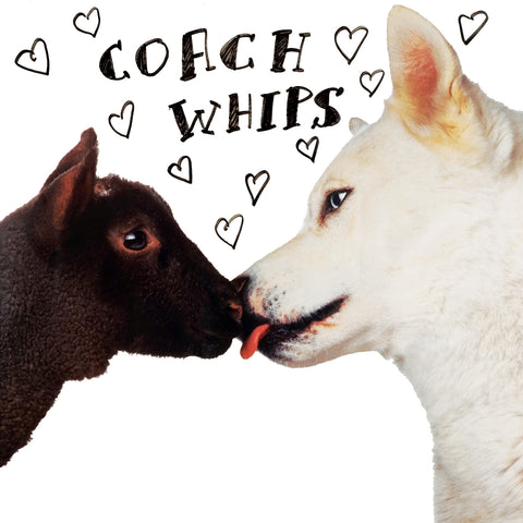 Coachwhips - Bangers Vs. Fuckers (reissue)