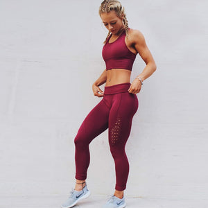 Seamless Spandex  High Waist Fitness Leggings in 5 Color
