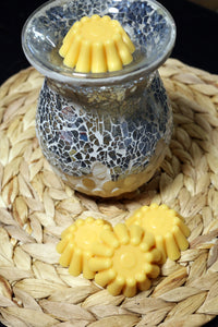 Soy wax tart melts