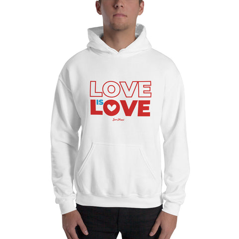 Love is Love Hooded Sweatshirt (No-Zip/Pullover)