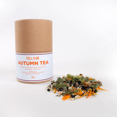 AUTUMN TEA, 20g
