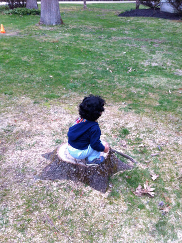 Son playing on tree stump