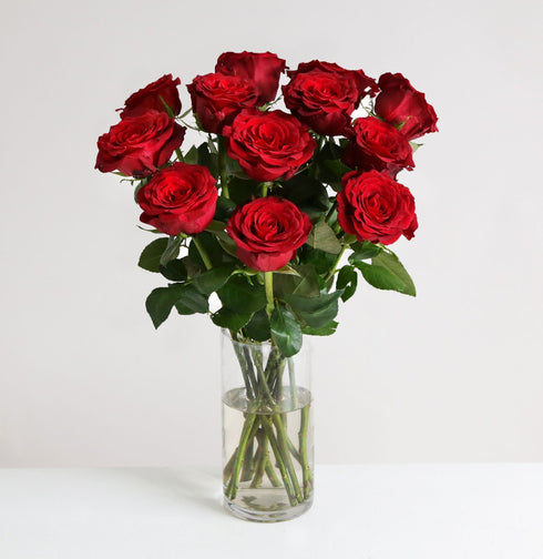 Fairtrade Dozen Red Roses