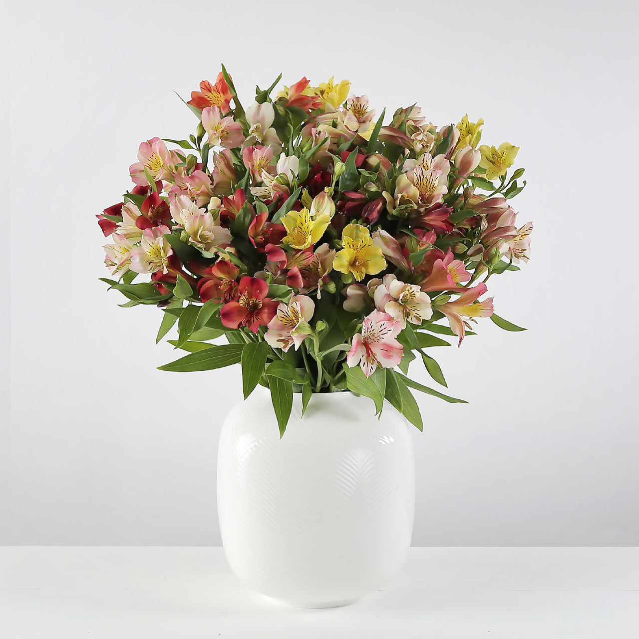 Beautiful British Alstroemeria