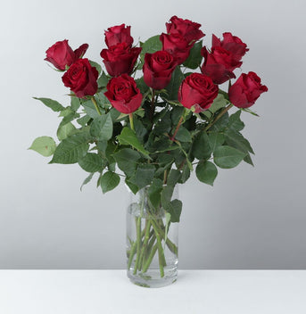 Valentine's Fairtrade Dozen Red Roses