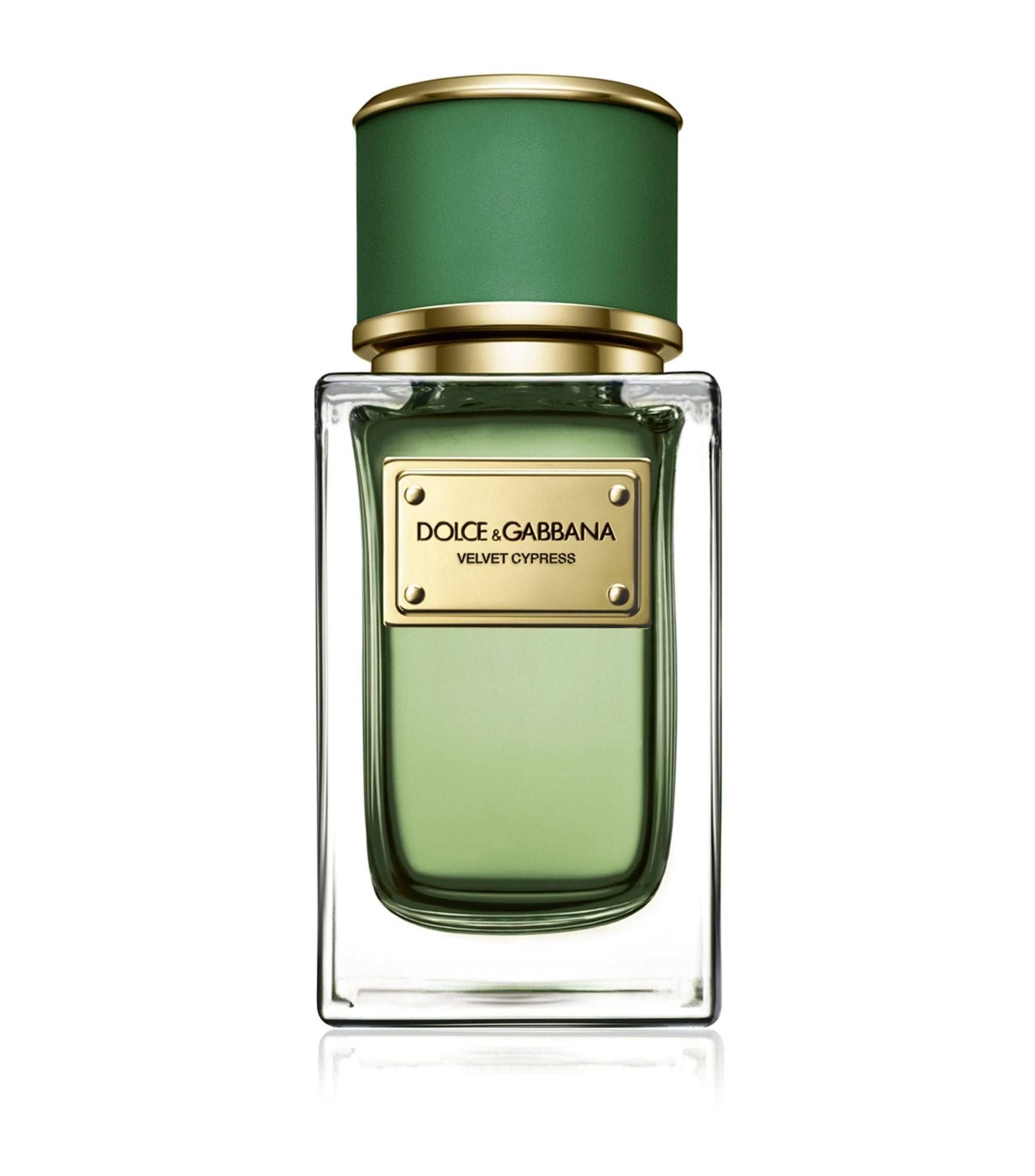 Velvet Cypress - Unisex - by DOLCE & GABBANA - EDP 100ml