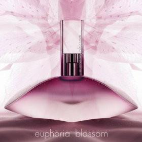 Fragrance - Euphoria Blossom EDT Spray - 100ml - CALVIN KLEIN