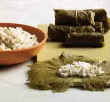 Grape Leaves Stuffed with Rice and Herbs