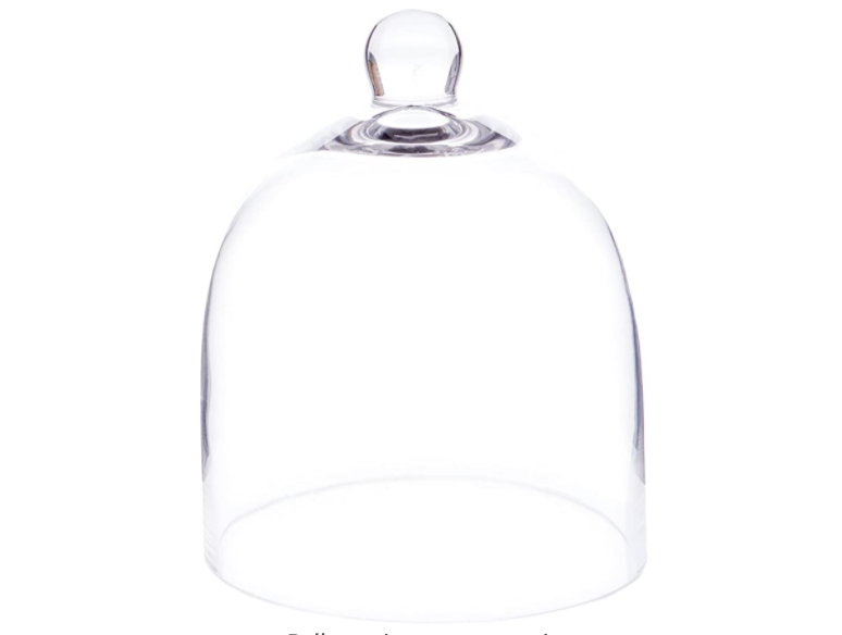 Glass Display Dome Cloche