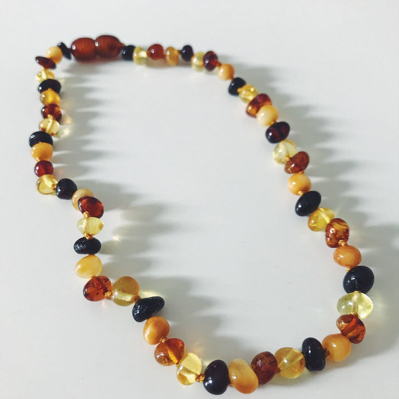Tri Color Baltic Amber