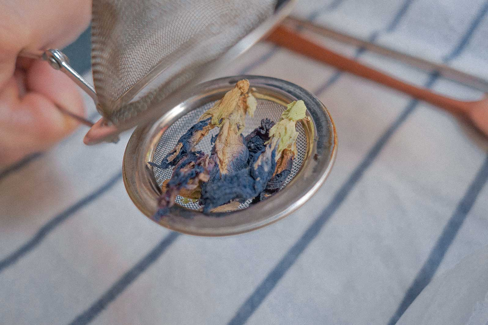 image showing a hand holding the tea strainer with blue dried butterfly pea flowers in it