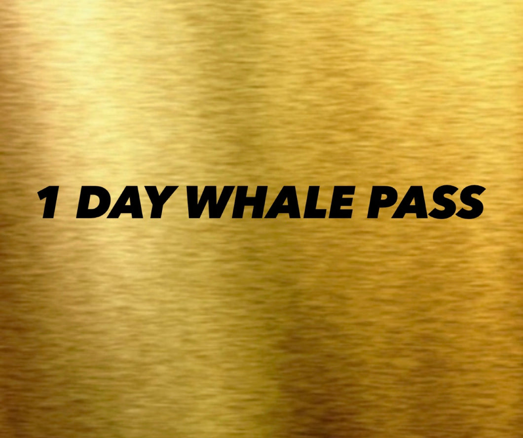 1 DAY WHALE PASS