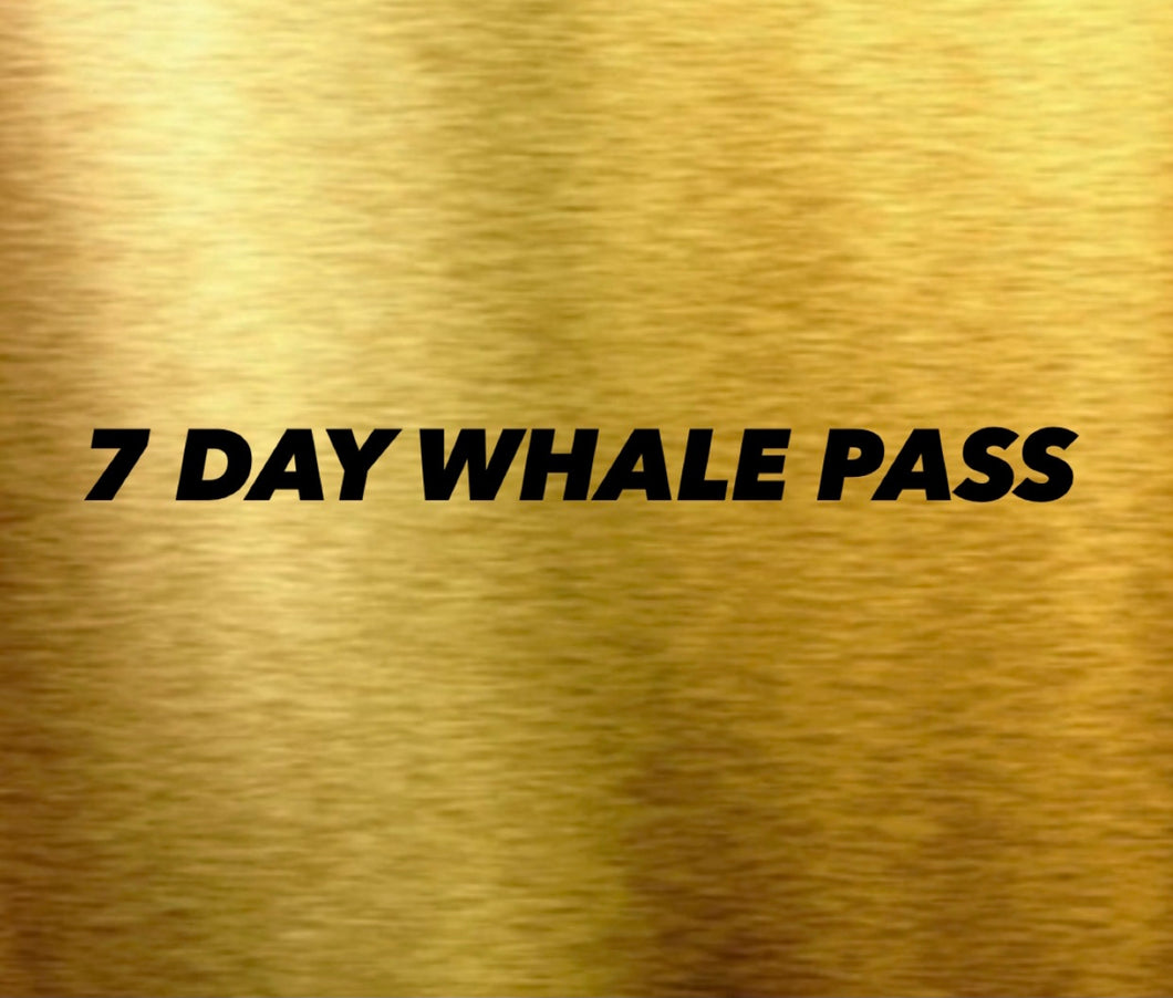 7 DAY WHALE PASS