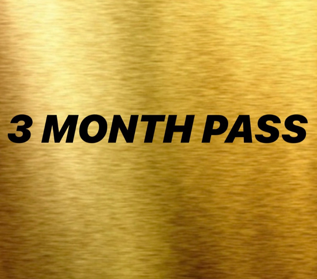 3 MONTH PASS