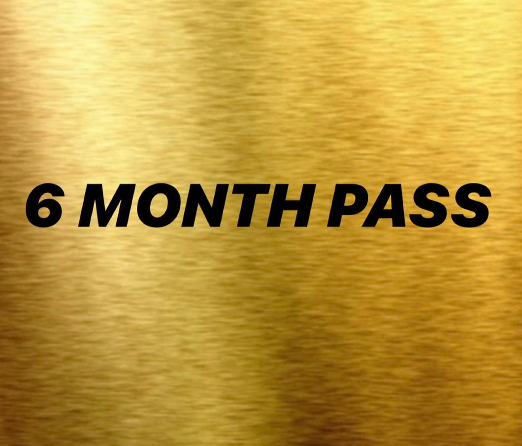 6 MONTH PASS