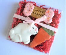 Load image into Gallery viewer, Hoppy Easter Gourmet Dog Treat Box