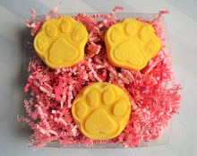 Load image into Gallery viewer, Dante's Paw-Print Bath Bomb Giftboxes