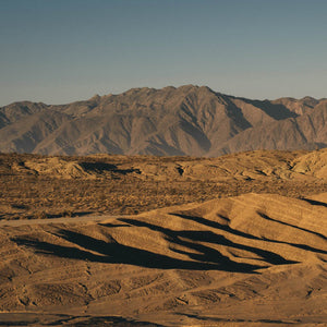 Dudes in the Desert: A Trip to Anza-Borrego Springs
