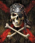 Blanket Queen Signature Select Pirate Skull