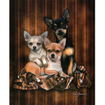 Blanket Queen Signature- Wolf Ct- JQ Chihuahua Trio Dog 2845