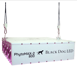 Phytomax-2 800 LED Grow Lights