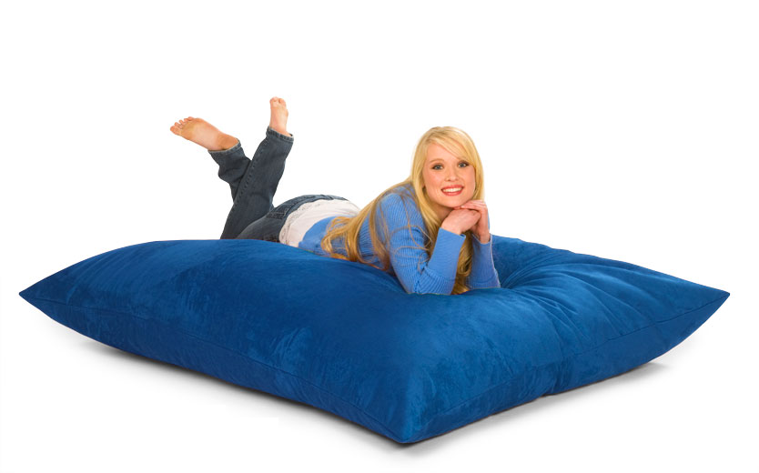Bean Bag Pillow