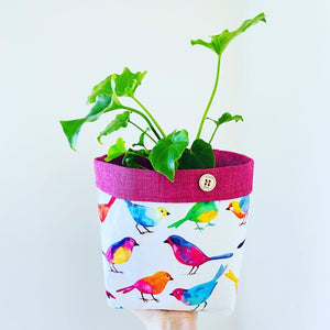 Planter - Rainbow Bird