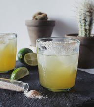 Ginger Margarita Kit