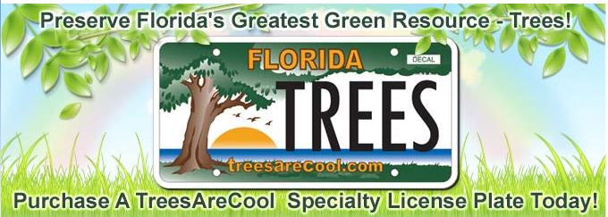 TreesAreCool Specialty License Plate Offered to Florida Drivers