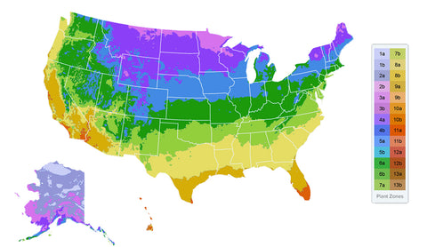 Plant Hardiness Zones and Chill Hours – Plant Me Green