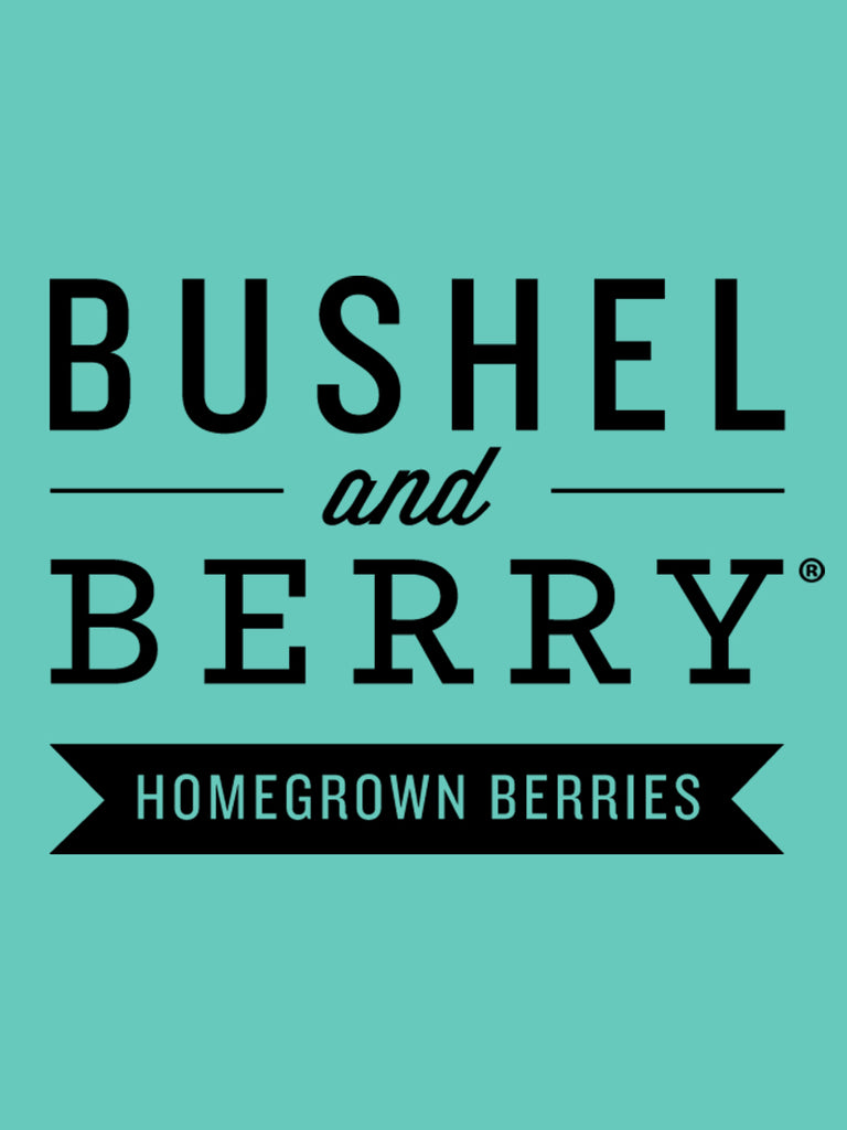 Raspberry - Bushel and Berry™ Shortcake®