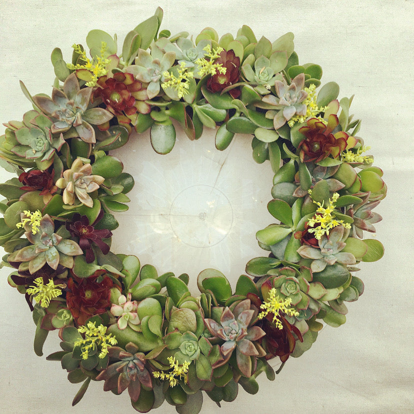 Fresh Succulent Wreath